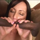 Interracial - sex - erotika 16456